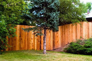 Fence-on-a-slope