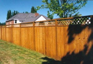 privacy-fence-300x206